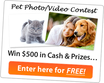 Pet Contest: Win $500 in Cash & Prizes…